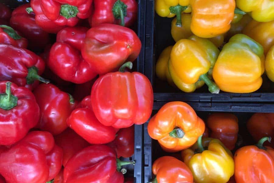 Bell Peppers in plastic bins