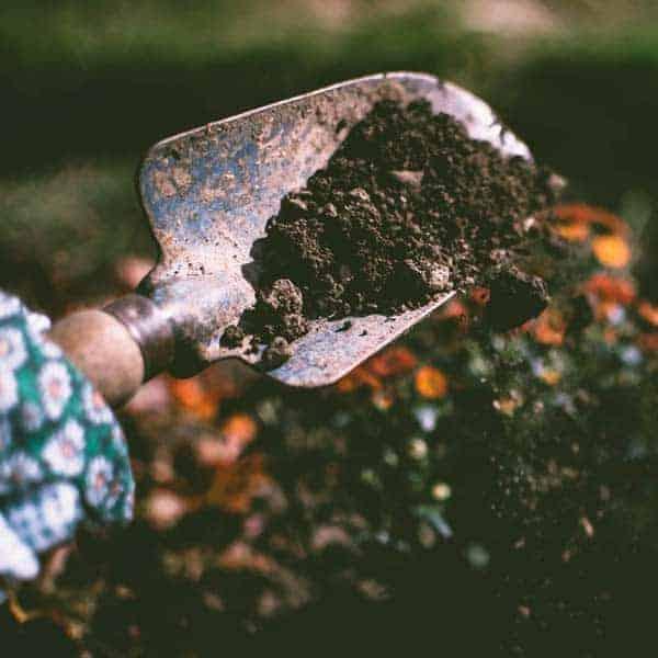 How to Make a DIY Compost Bin