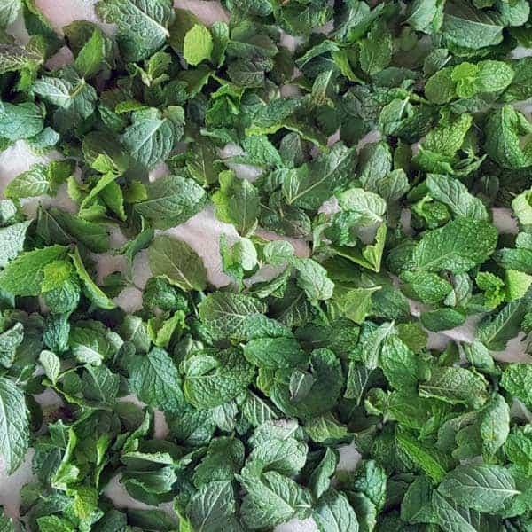 Three Methods for Freezing Fresh Herbs