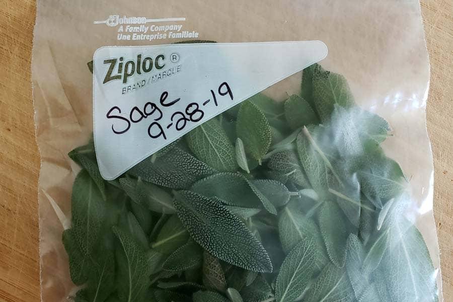 Fresh herbs in zip lock bag