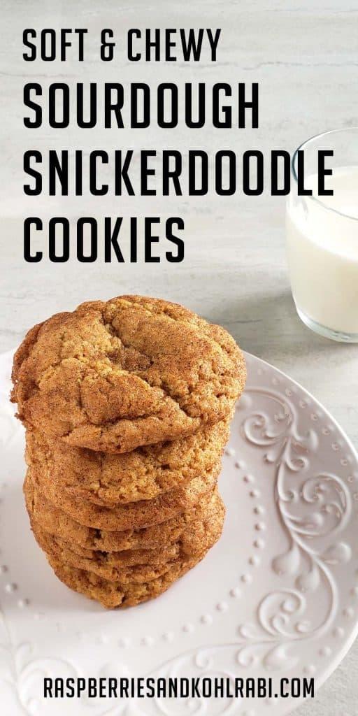 sourdough snickerdoodles pinterest image