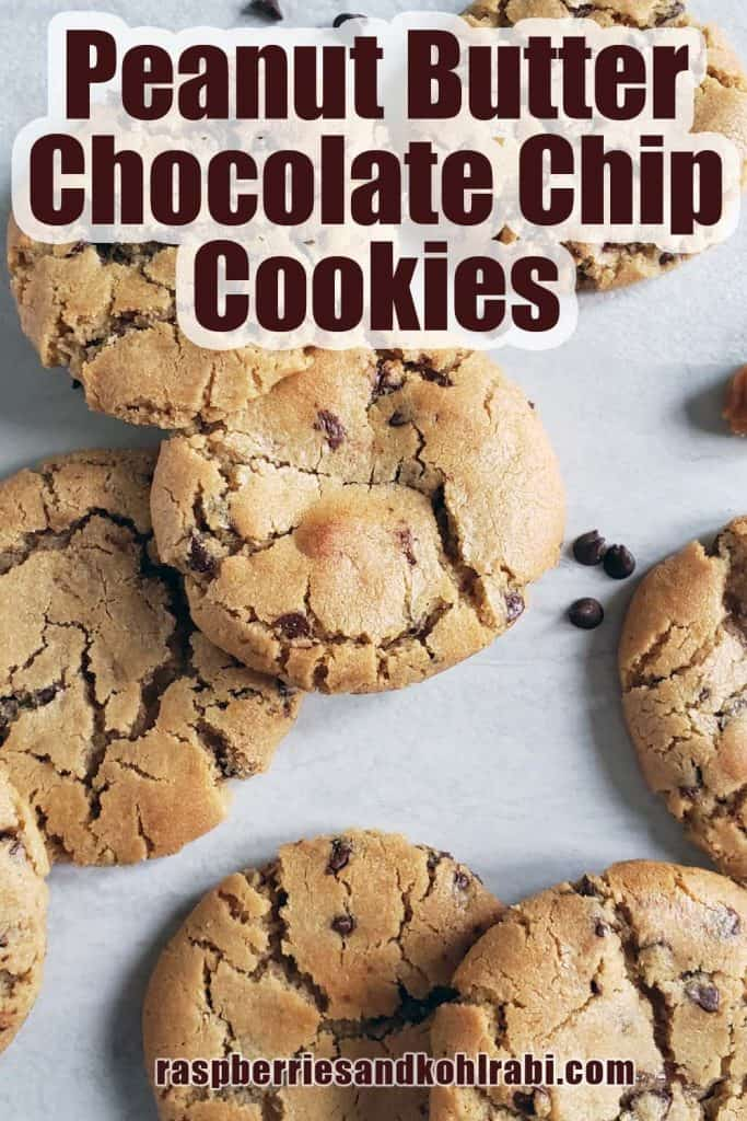 peanut butter chocolate chip cookies pinterest image