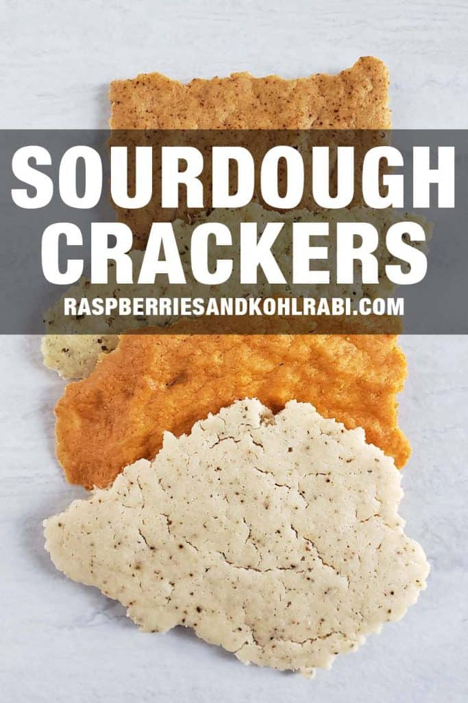 Sourdough Crackers on a white background