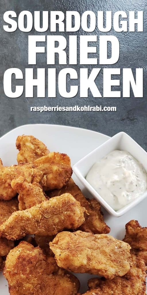 sourdough fried chicken strips on white plate with ranch dipping sauce