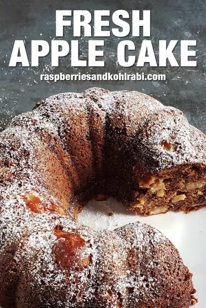 fresh apple cake on white plate